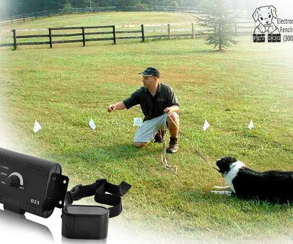 electronic pet dog fencing system 200 meters
