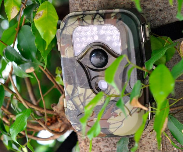 hunting game camera with motion detection pir sensor night vision