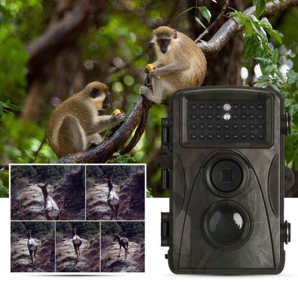 1080p trail camera full hd